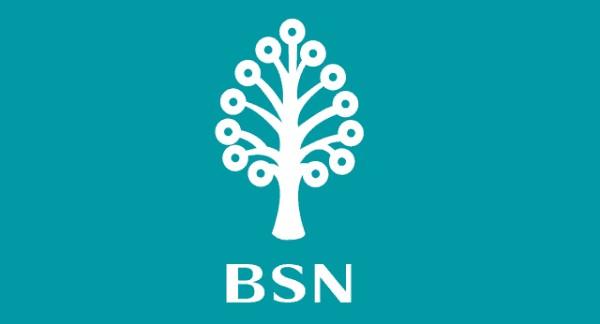 b.s.n.