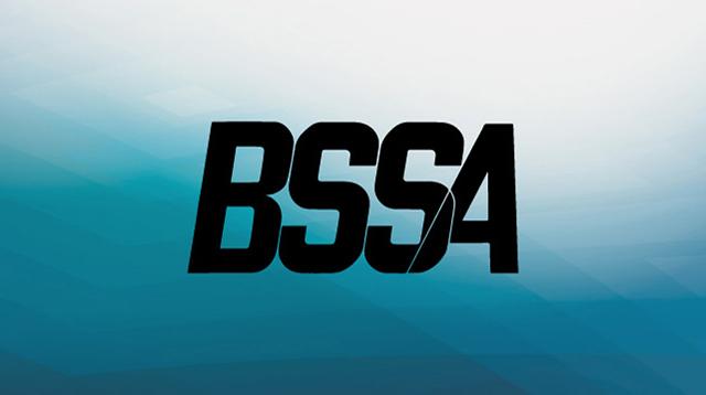 b.s.s.a.