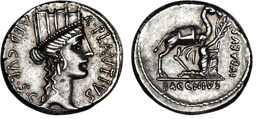 bacchius