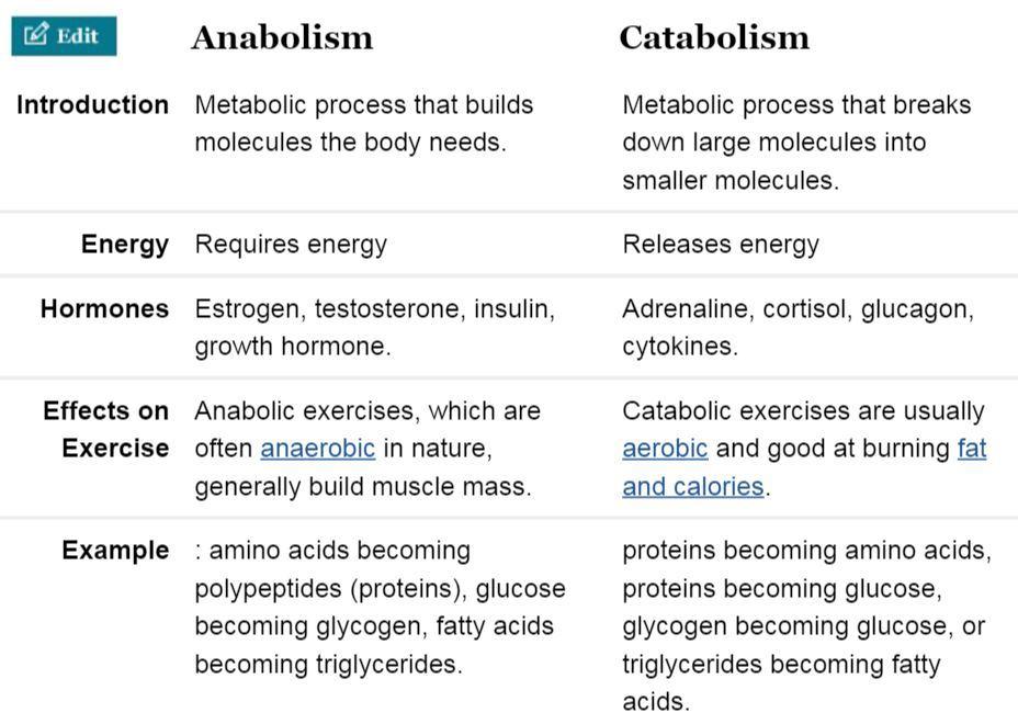 catabolic