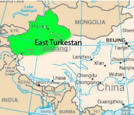 chinese turkestan