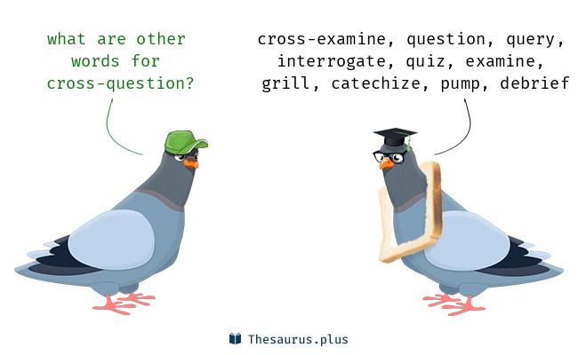 cross-question