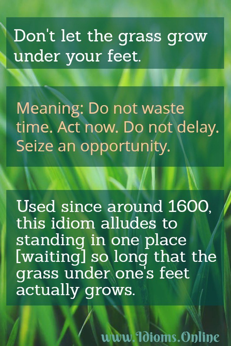 don't let the grass grow under one's feet