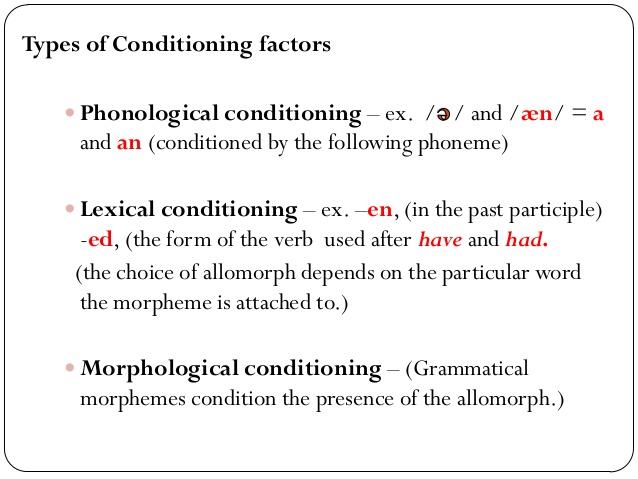 morpheme structure condition
