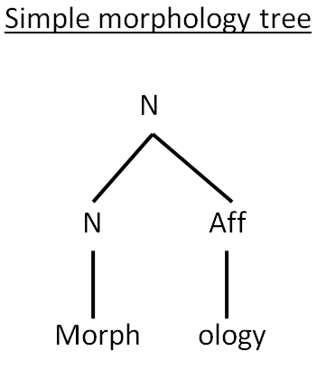 morphonology