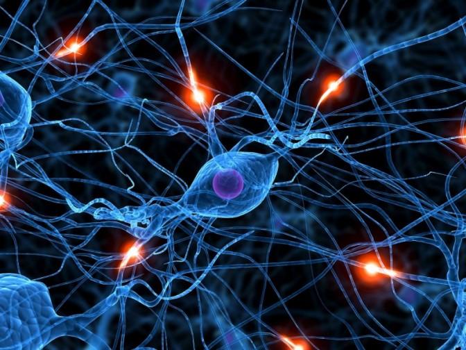 neurotoxin