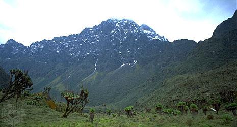 ngaliema mountain