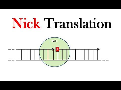 nick  nick  nick  nick  Nick  nick  nicking  nick