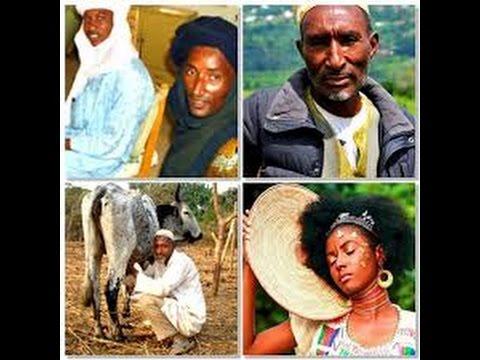 Niger-Kordofanian