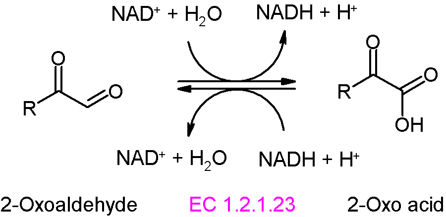 oxyaldehyde