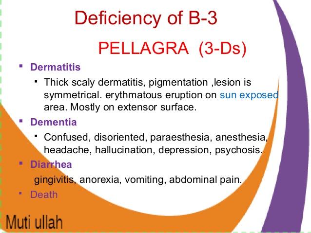 pellagra-preventive factor
