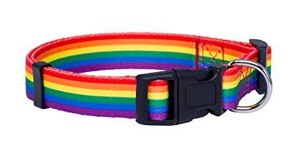 rainbow-collar