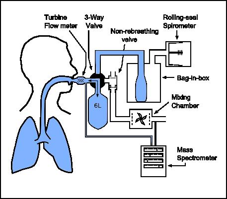 rebreathing technique