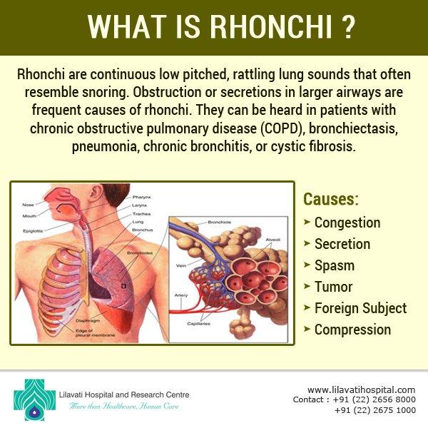 rhonchi