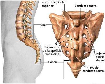 sacralgia