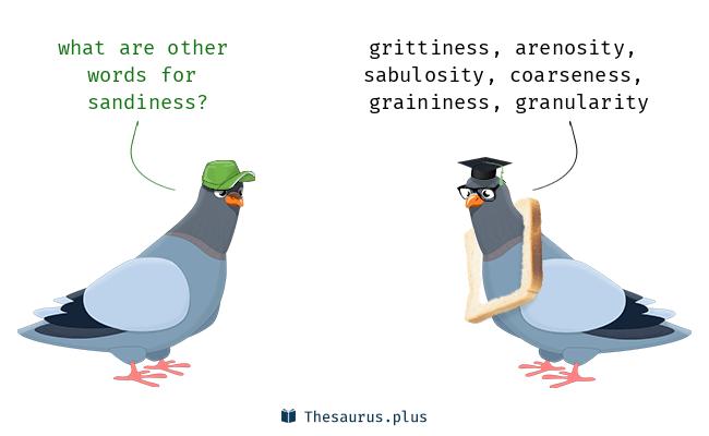 sandiness