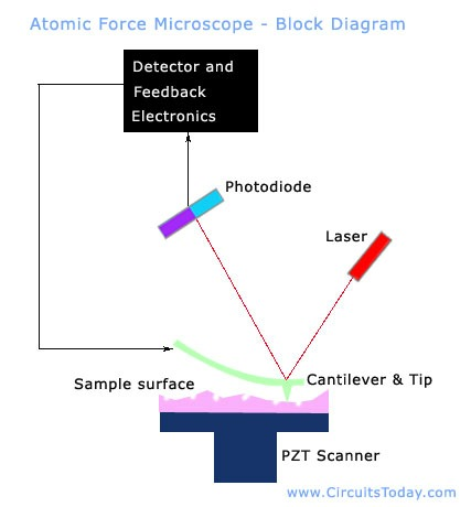 scanning force microscope