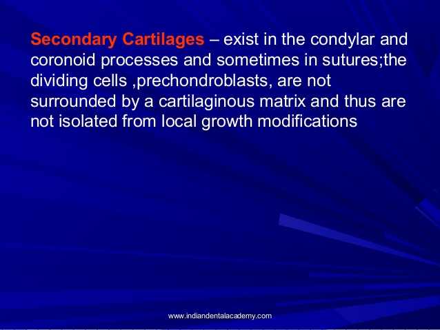 secondary cartilage