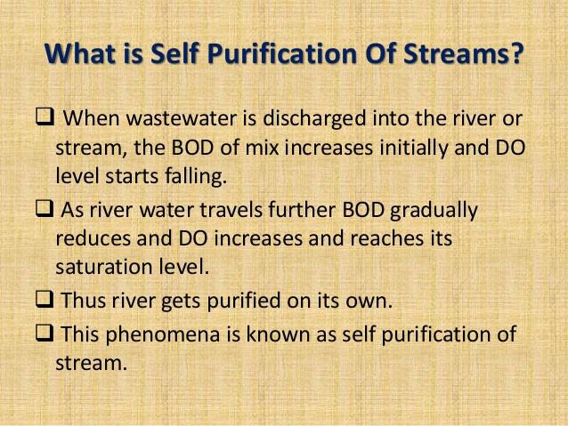 self-purification