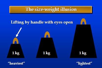 size-weight illusion