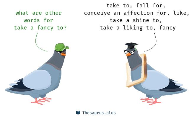 take a fancy to