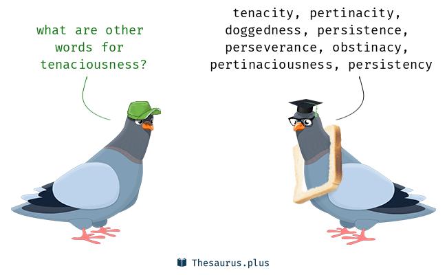 tenaciousness