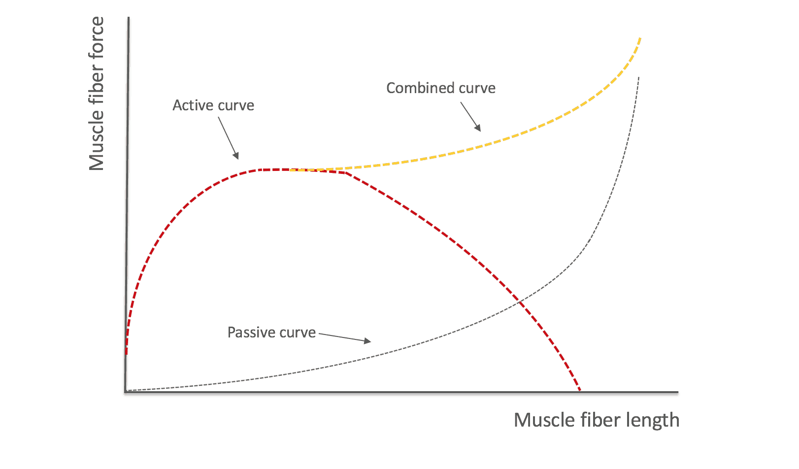 tension curve