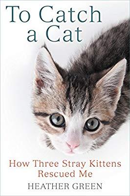 three-a-cat