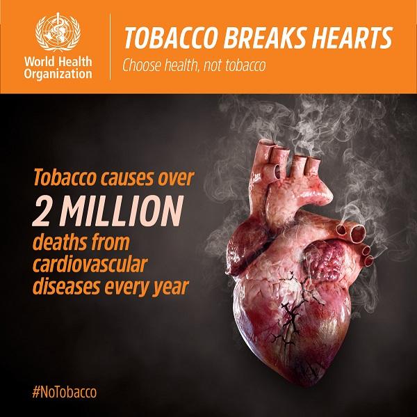 tobacco heart