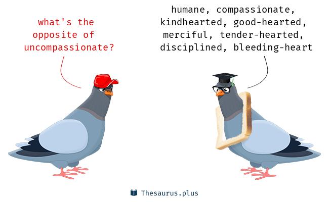 uncompassionate