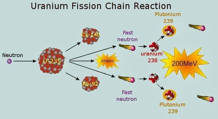 uranium 239
