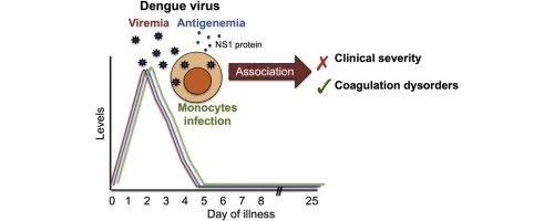 viremia