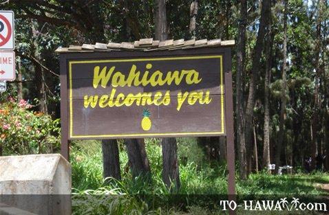 Wahiawa