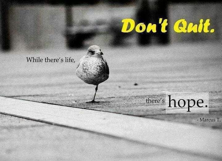 while there's life, there's hope