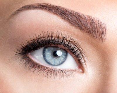 white-eye