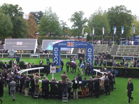 winner's enclosure