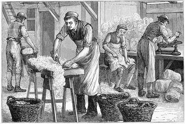 wool-sorter's disease