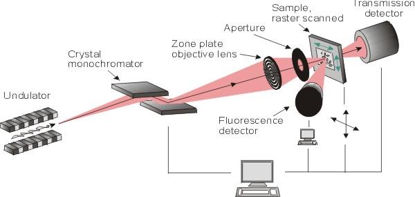 x-ray microscope