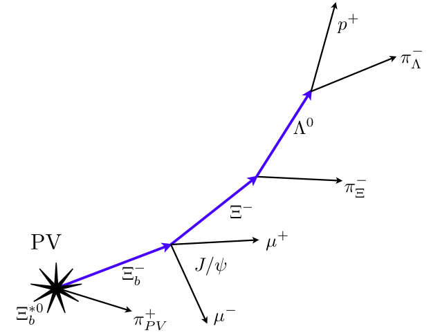xi particle