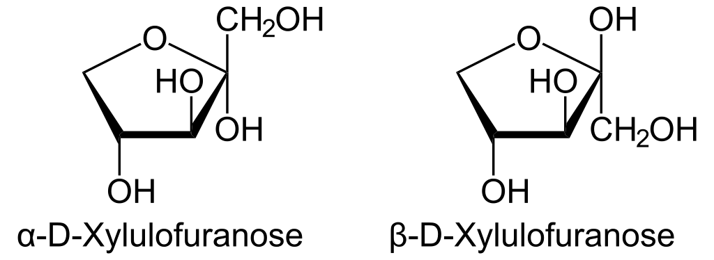 xylulose