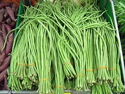 yard-long bean