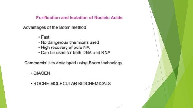 yeast nucleic acid