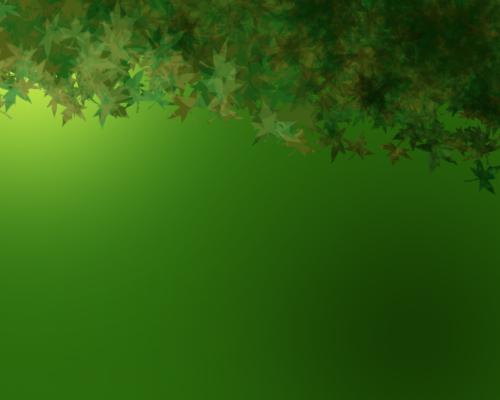 back green