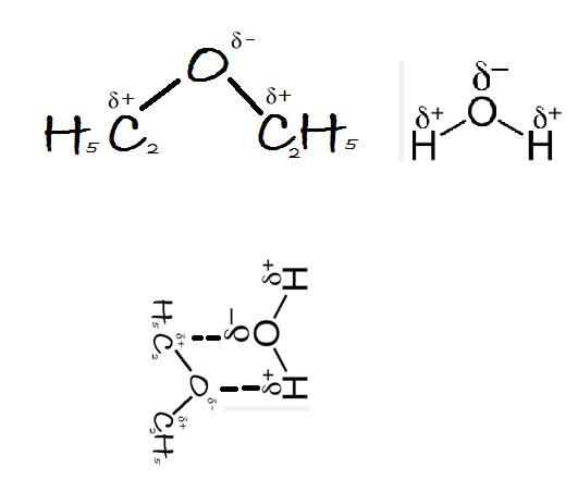 ethoxyethane