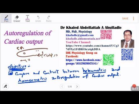 homeometric autoregulation