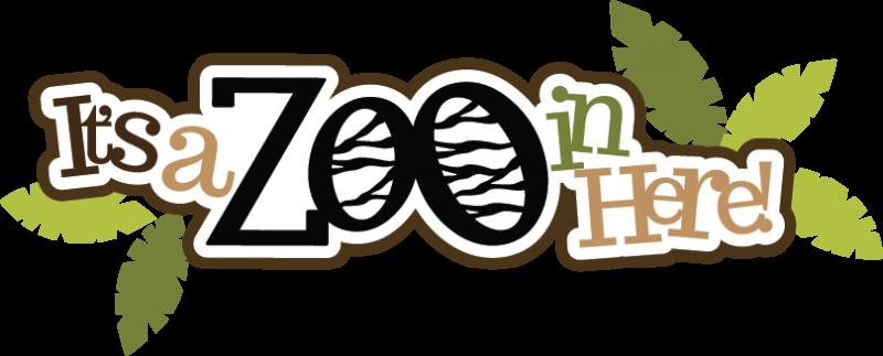 it's a zoo