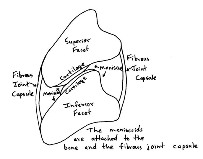 meniscoid