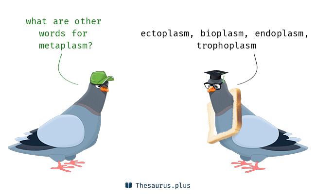 metaplasm
