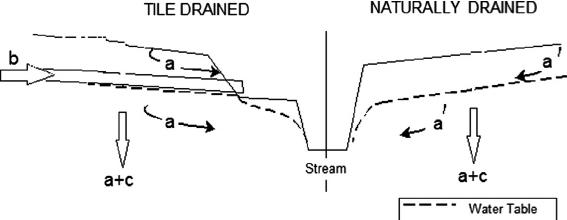 nitrogen partition