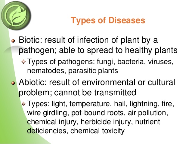 organic disease